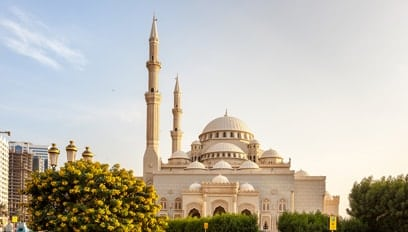 Property types in Sharjah